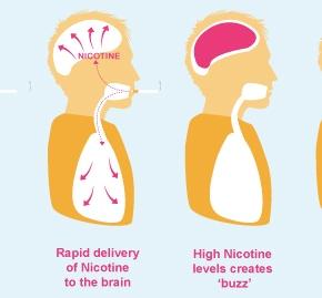 Ma la nicotina fa proprio male? |Reuters