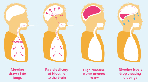 truth_about_nicotine_02
