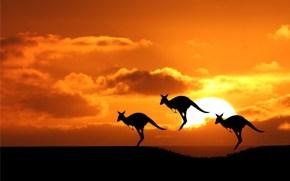 Vaping, anche in Australia si aprono i primi spiragli proe-cig.